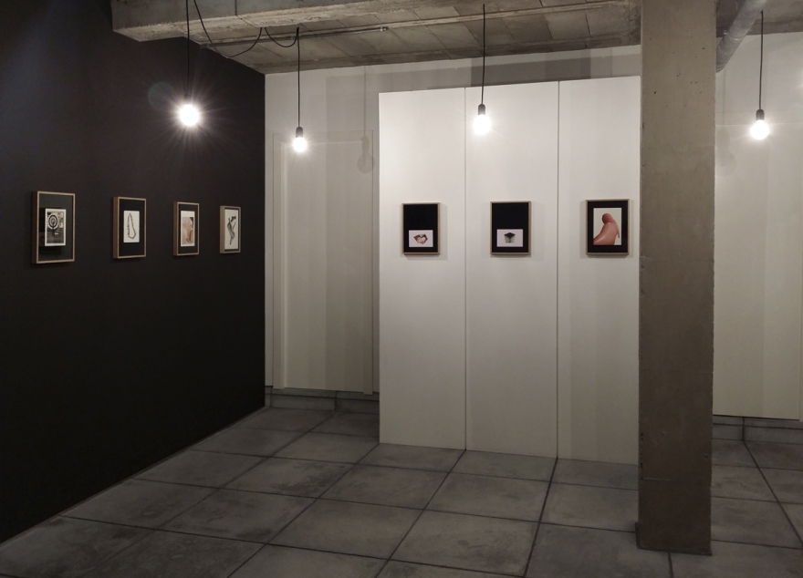Exposición EVA_LAB